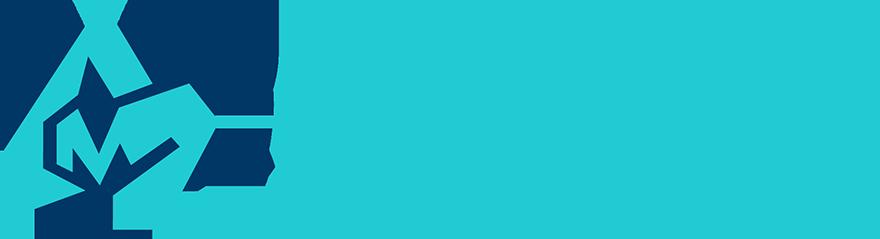 Amgadization