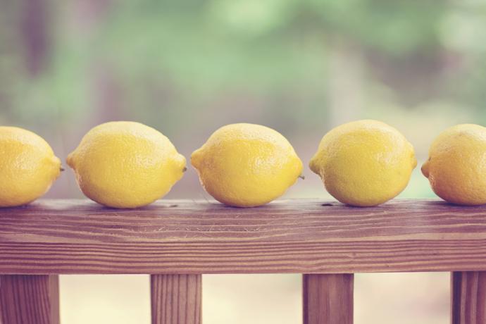 Free Website Lemon